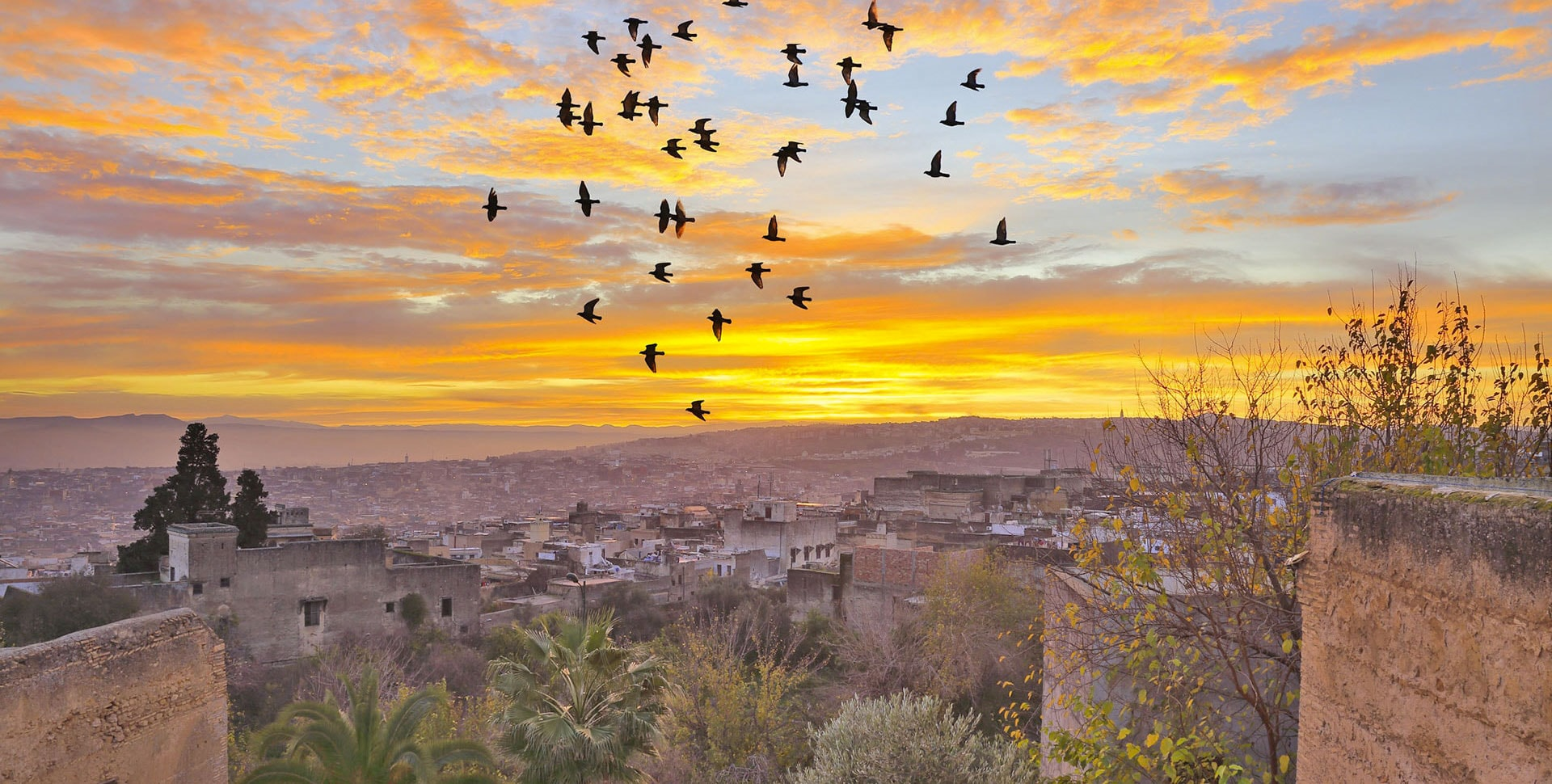 Best Morocco Tours | 3 days Marrakech to Fes